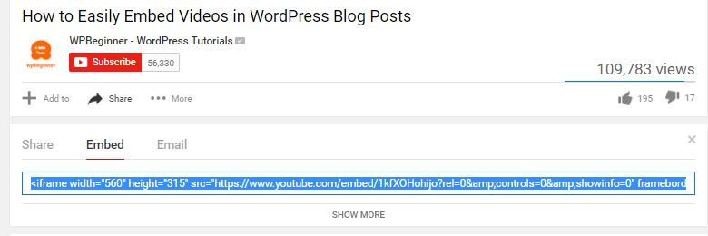 wordpress video4
